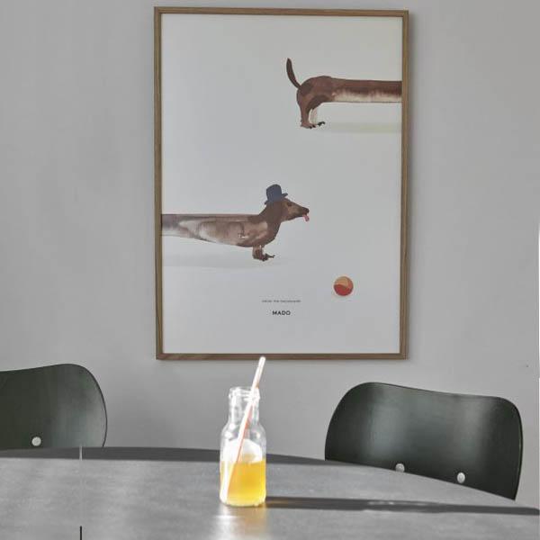 MADO - Doug the Dachshund - 50 x 70