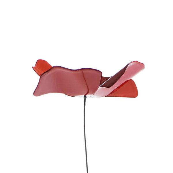 Opinion Ciatti - Papavero L - rosso
