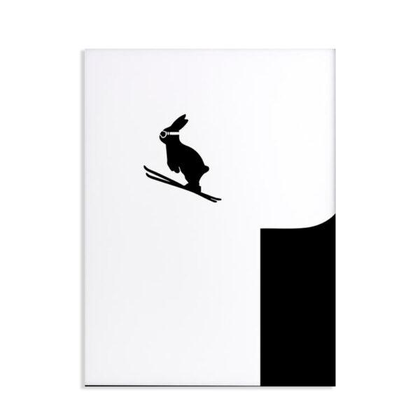 HAM - Ski jumping - Coniglio sciatore 30 x 40
